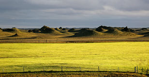 Iceland landscape natural looking landscape in green colours Stock Photography