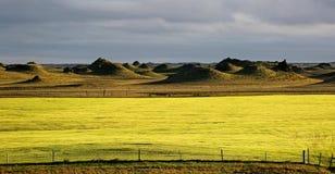 Iceland landscape natural looking landscape in green colours. Beautiful Iceland landscape natural looking landscape Stock Photography