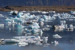Iceland landscape natural looking landscape with ice fields. Beautiful Iceland landscape natural looking landscape with ice and fjords Stock Images