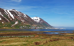 Iceland landspace with fjord and mountain Royalty Free Stock Image