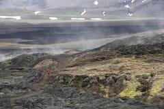 Iceland lava field Stock Photo