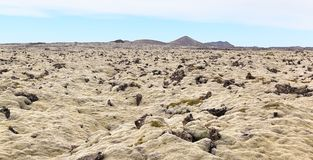 Iceland Lava Field Lanscape Royalty Free Stock Image