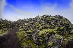 Iceland Lawowy pole Zdjęcie Royalty Free