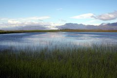 Iceland Marshes. Beautiful and breathtaking Royalty Free Stock Images