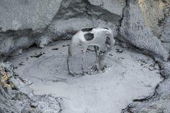 Iceland_mud2 Стоковое Изображение RF
