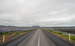 Iceland ring road Stock Photography