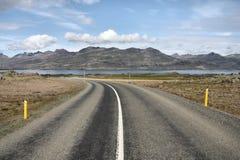 iceland ringled arkivbild