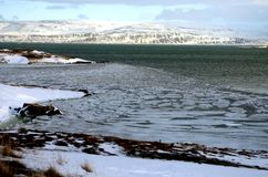Iceland`s landscape in winter Royalty Free Stock Photography