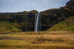 iceland seljalandsfossvattenfall En av den mest berömda vattenfallet i Island Långt exponeringsfoto royaltyfria foton