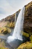 iceland seljalandsfossvattenfall En av den mest berömda vattenfallet i Island Molnig höstdag fotografering för bildbyråer