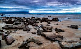 Iceland Shore. South side of the West Fjords, the tide it out revealing this cluster of rocks and sand Royalty Free Stock Image