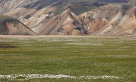 Iceland. South area. Fjallabak. Volcanic landscape with rhyolite Stock Photography