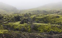 Iceland. South area. Lakagigar. Volcanic landscape. Stock Photo