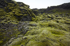 Iceland. South area. Lakagigar. Volcanic landscape. Royalty Free Stock Image