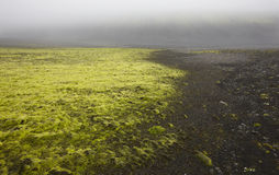 Iceland. South area. Lakagigar. Volcanic landscape. Royalty Free Stock Photography