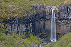 iceland svartifossvattenfall royaltyfri bild