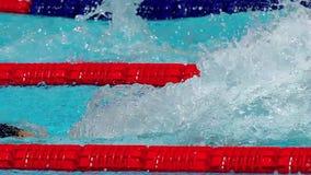 Iceland swimmer Anton Sveinn McKee swimming butterfly stock footage