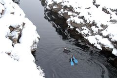 Iceland Travel. A winter snorkeler in the water at the national park Pingvellir, in Southwestern Iceland Stock Image