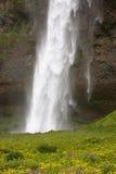 iceland vattenfall Royaltyfria Foton