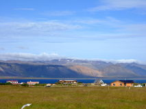 Iceland village. Village in  Iceland  on seashore with meadows,mountains and glaciers Stock Photography