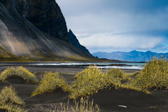 Icelandic black seaside. One of the black volcanic and quiet beaches of Iceland, with mountains arriving to the sea Royalty Free Stock Image