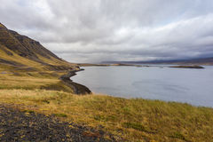 Icelandic coast in autumn, cloudy Royalty Free Stock Images