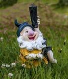 Icelandic_Dwarf-2 Image stock
