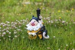 Icelandic_Dwarf Photo stock