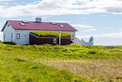 Icelandic eco house with grass on the roof, in the village on Flatey island, Iceland. Architecture arctic bio cliff countryside dwelling ecofriendly europe stock photo