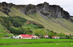 Icelandic farm Stock Photo