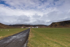 Icelandic Farm with Mountains Royalty Free Stock Image