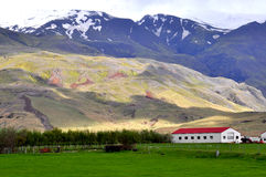 Icelandic farm in the mountains Stock Photography