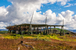 Icelandic fish racks stock photography