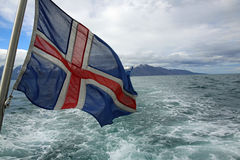 Icelandic Flag stock photos