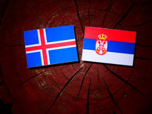Icelandic flag with Serbian flag on a tree stump royalty free stock image