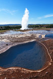 Icelandic geyser Royalty Free Stock Photography