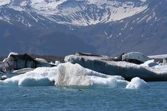 Icelandic glacier landscape Stock Images