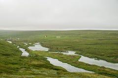 Icelandic green landscape Royalty Free Stock Images