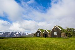 Icelandic green roof houses Stock Images