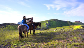 Icelandic Horse Trek Royalty Free Stock Images