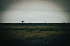 Icelandic horseback rider on black sand beach stock photography