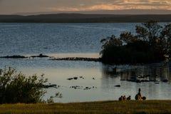 Icelandic landscape Royalty Free Stock Photo