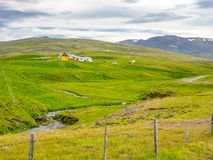 Icelandic landscape with green hill, mountain and a stream Stock Photos