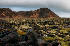 Icelandic landscape. Lava field and moss - South west Iceland Stock Image