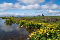 Icelandic landscape at Myvatn Lake Stock Image