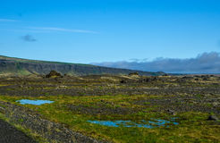 Icelandic landskap för sommar arkivbild