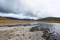 icelandic liggande Royaltyfria Foton