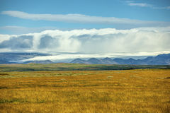icelandic liggande Arkivfoto