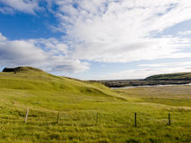 Icelandic meadow Royalty Free Stock Images