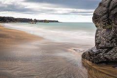 icelandic na plaży Zdjęcie Royalty Free